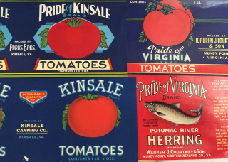 KinsaleTomatoes2020